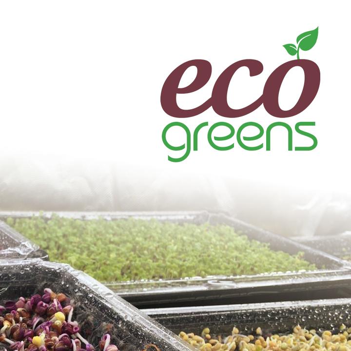 Eco Greens Microgreens Benefits Blog Article